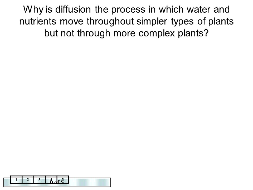 Why is diffusion the process in which water and nutrients move throughout simpler types of plants but not through more complex plants