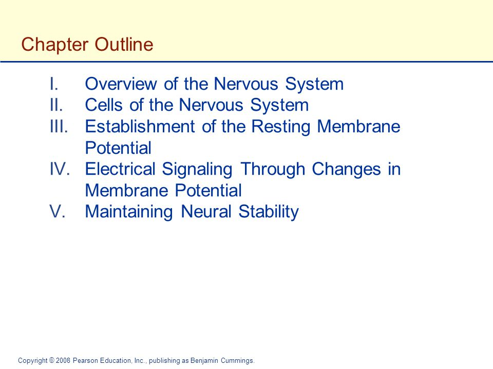 Chapter Outline Overview of the Nervous System