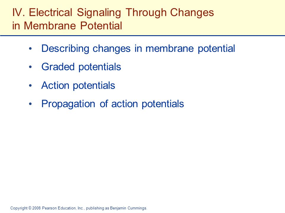 IV. Electrical Signaling Through Changes in Membrane Potential