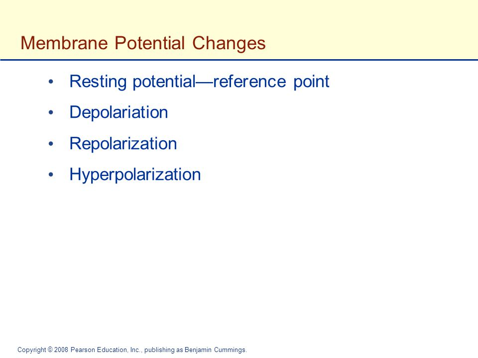 Membrane Potential Changes
