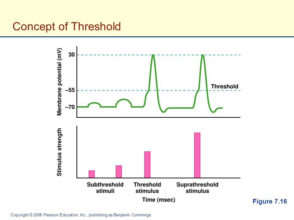 Concept of Threshold Figure 7.16