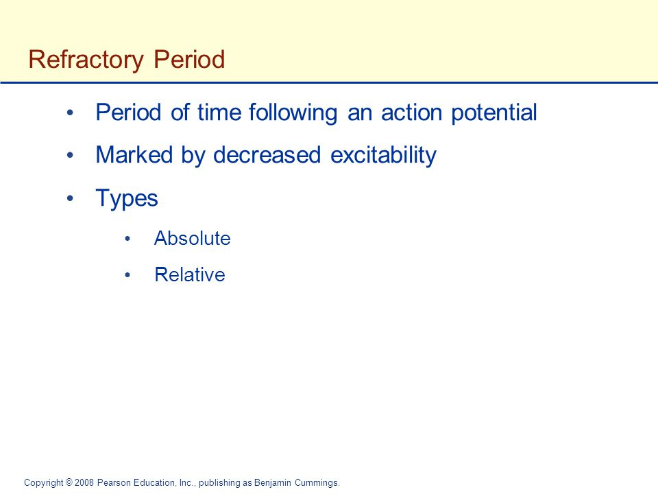 Refractory Period Period of time following an action potential