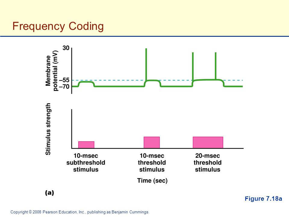 Frequency Coding Figure 7.18a