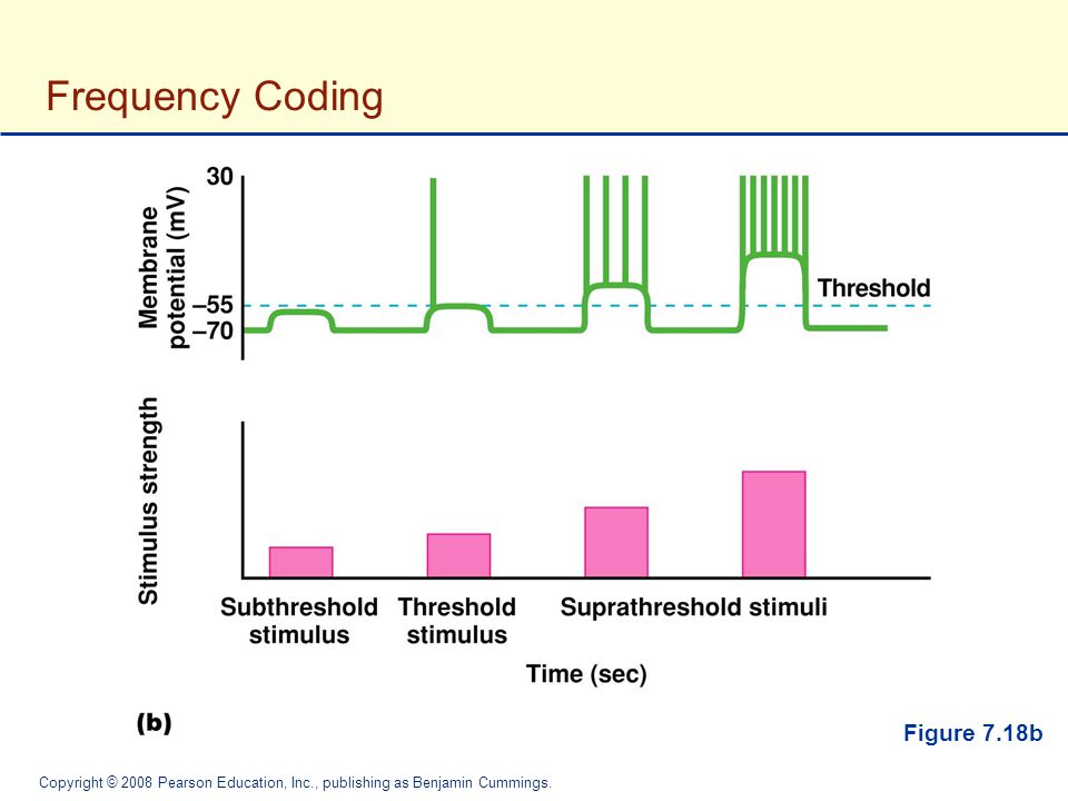 Frequency Coding Figure 7.18b