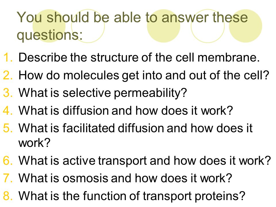 Cell Membrane And Cell Transport Notes Ppt Download