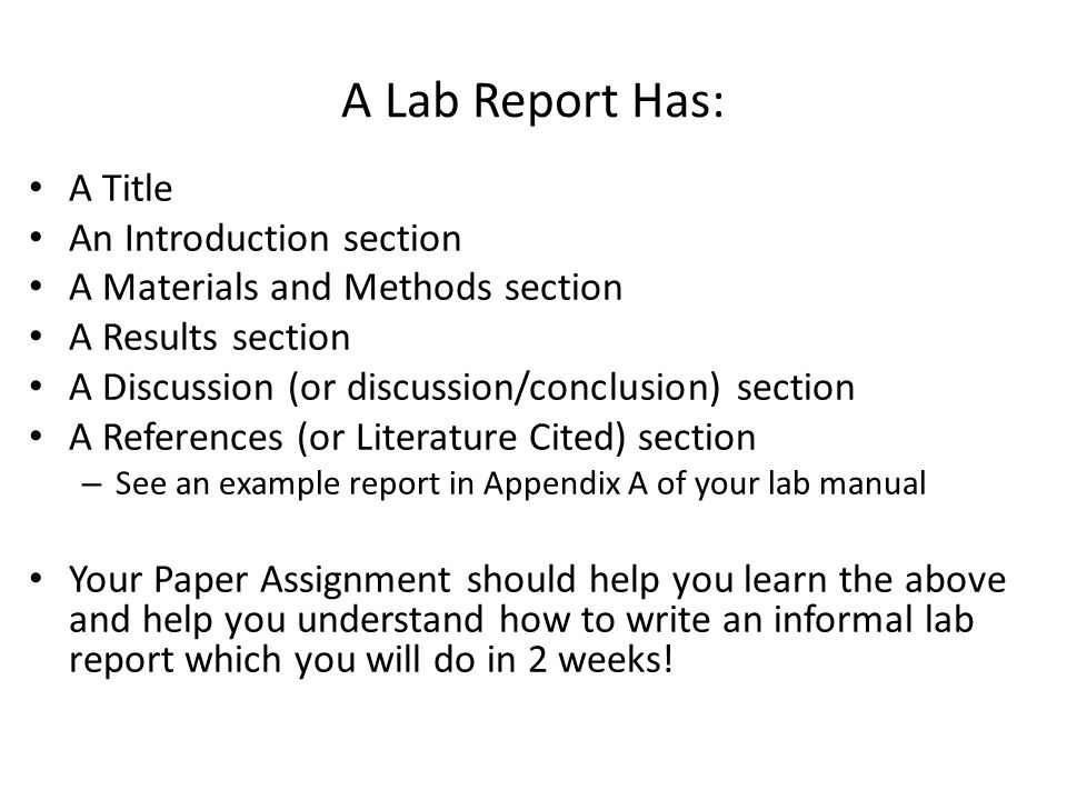 cause and effect of broken family essay nibley timely timeless order of psychology lab report nc state university lab report types of experimental errors