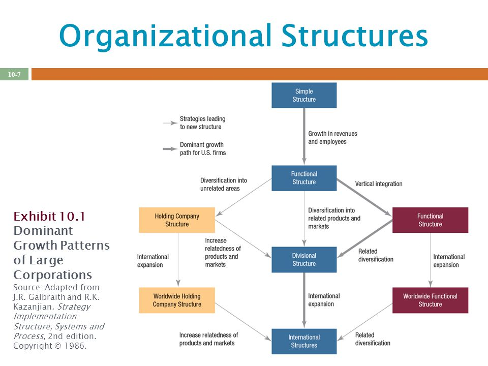 organizational strategy structure and process pdf