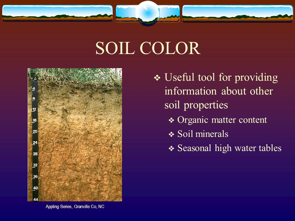 Important soil properties ppt video online download for Soil minerals