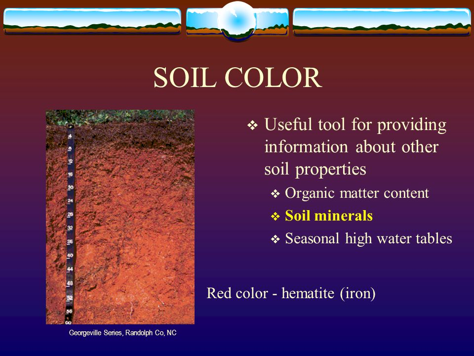 Important soil properties ppt video online download for Importance of soil minerals
