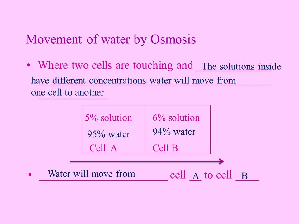 Movement of water by Osmosis