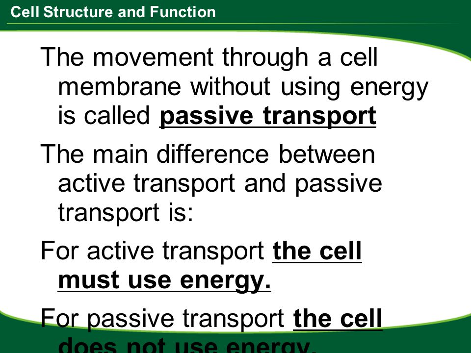what is the relationship between passive transport and active