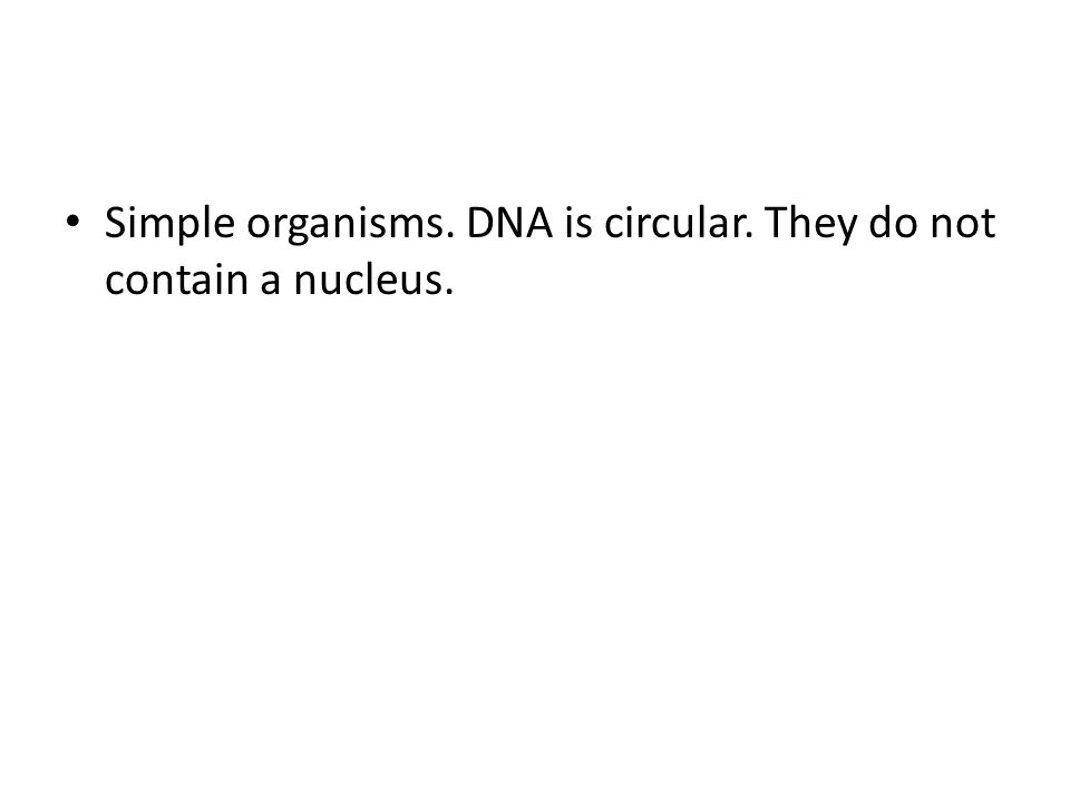 Simple organisms. DNA is circular. They do not contain a nucleus.