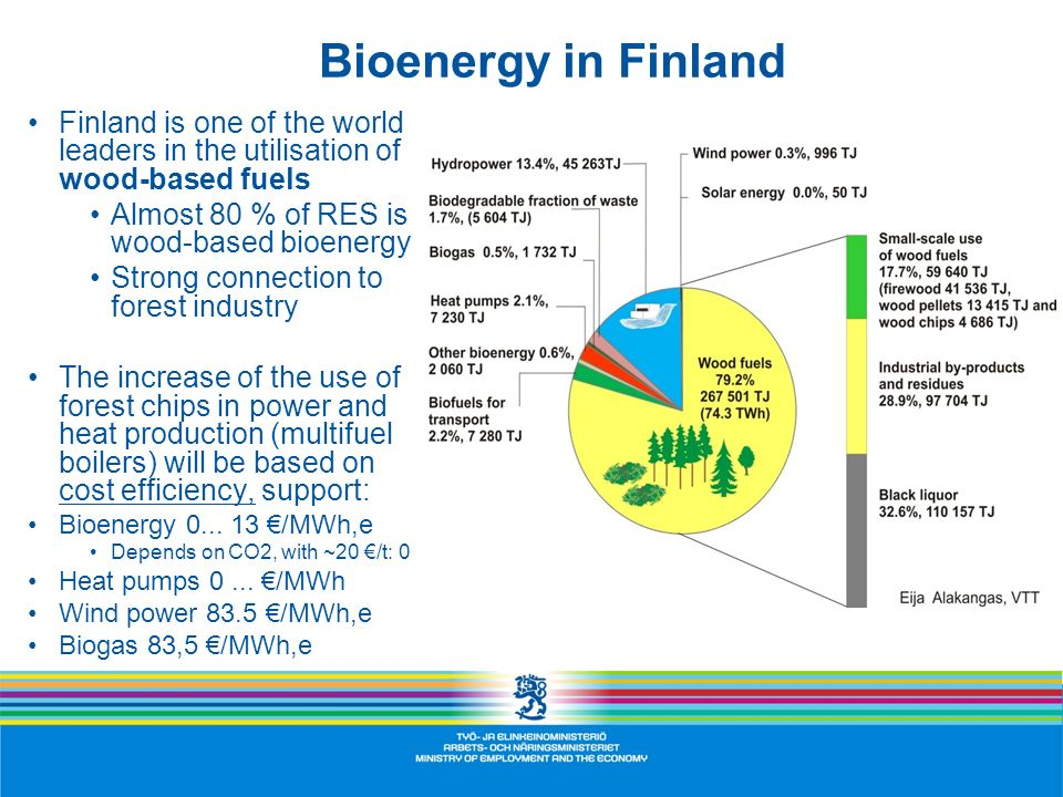 Bioenergy in Finland Finland is one of the world leaders in the utilisation of wood-based fuels. Almost 80 % of RES is wood-based bioenergy.