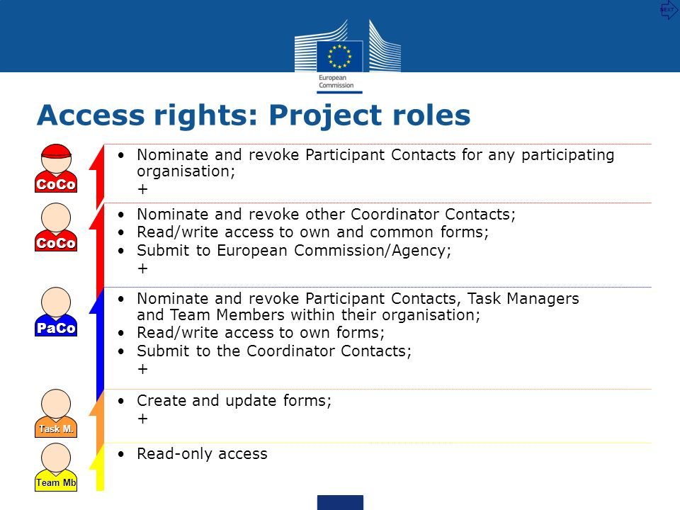 Access rights: Project roles