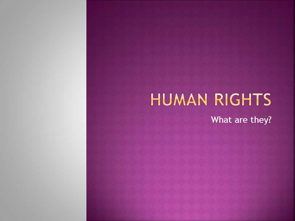 Human Rights What are they