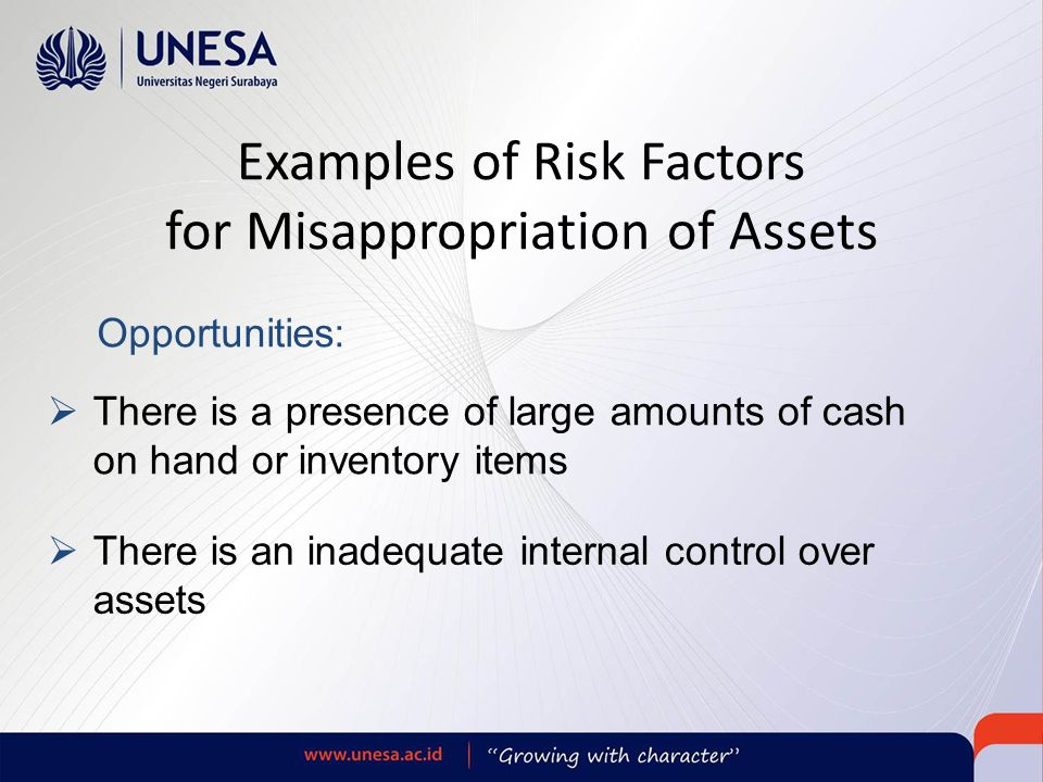 Examples of Risk Factors for Misappropriation of Assets