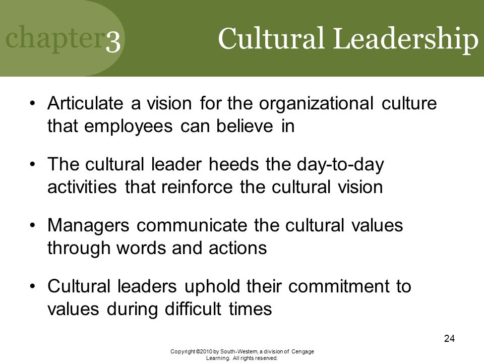 Cultural Leadership Articulate a vision for the organizational culture that employees can believe in.
