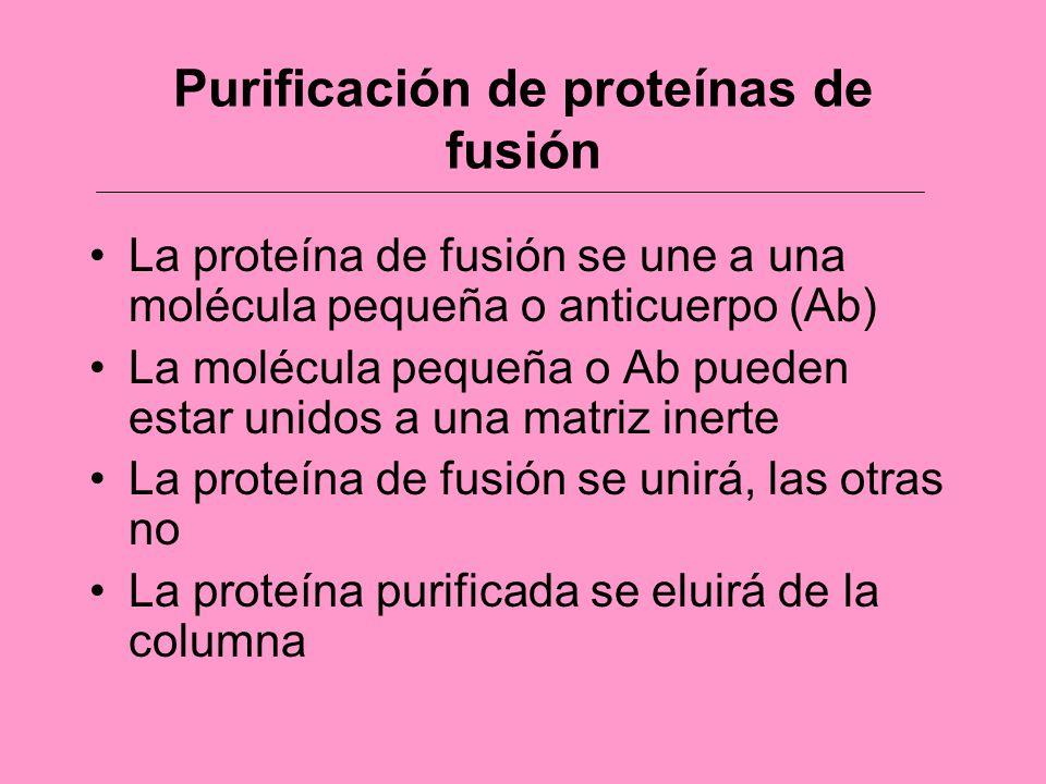 Purificación de proteínas de fusión