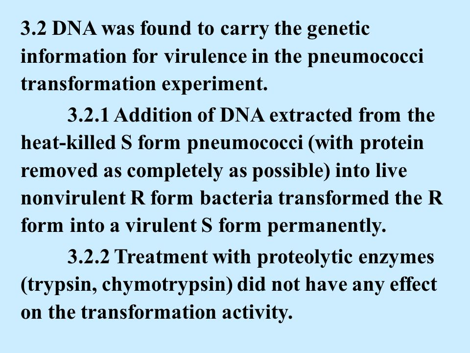 DNA structure and replication - ppt download