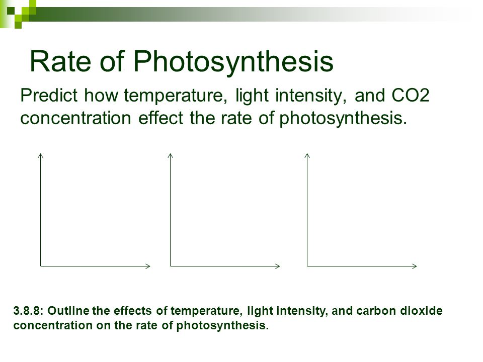 "effect light intensity on photsynthesis Light intensity is usually defined as the energy hitting an area over some time period so in the case of a plant, a higher light intensity means more packets of light called ""photons"" are hitting the leaves as you rise from low light intensity to higher light intensity, the rate of photosynthesis will increase."