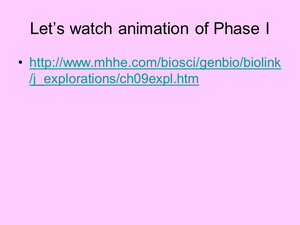 Let's watch animation of Phase I