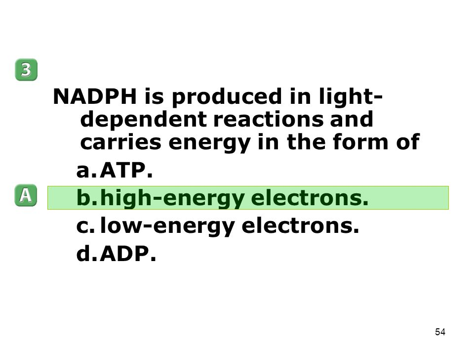Photosynthesis (Chapter 8) - ppt download