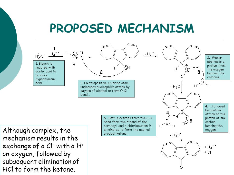 PROPOSED MECHANISM 1. 3. Water abstracts a proton from the oxygen bearing the chlorine…