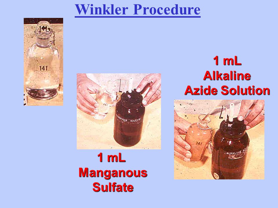 Winkler Procedure 1 mL Alkaline Azide Solution 1 mL Manganous Sulfate