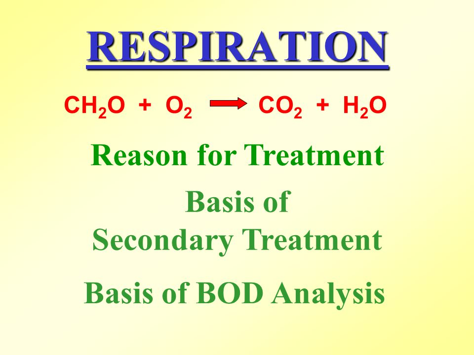 RESPIRATION Reason for Treatment Basis of Secondary Treatment