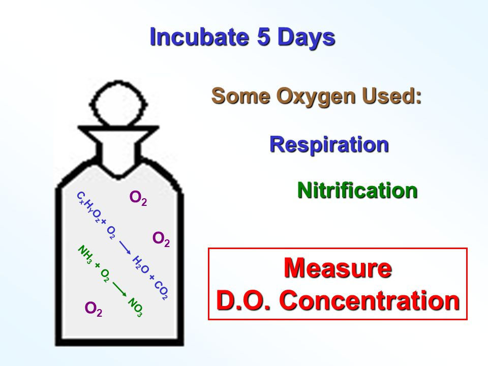 Measure D.O. Concentration