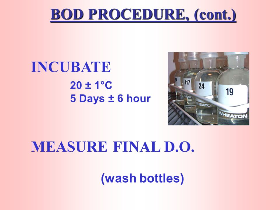 BOD PROCEDURE, (cont.) INCUBATE MEASURE FINAL D.O.