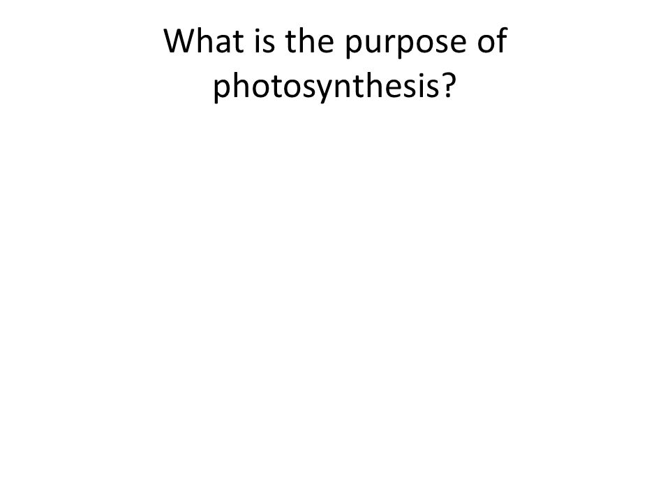 purpose of photosynthesis In this lesson, we'll learn how electrons get excited during the light-dependent reactions of photosynthesis, jumping off photosystem reaction.
