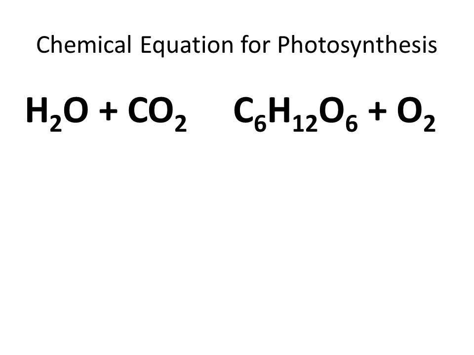 chemical equation for photosythesis The equation for photosynthesis is a deceptively simple summary of a very complex process actually, photosynthesis is not a single process, but two, each with multiple steps these two stages of photosynthesis are known as the light reactions (the photo part of photosynthesis) and the calvin cycle (the synthesis part) (figure 10-4.