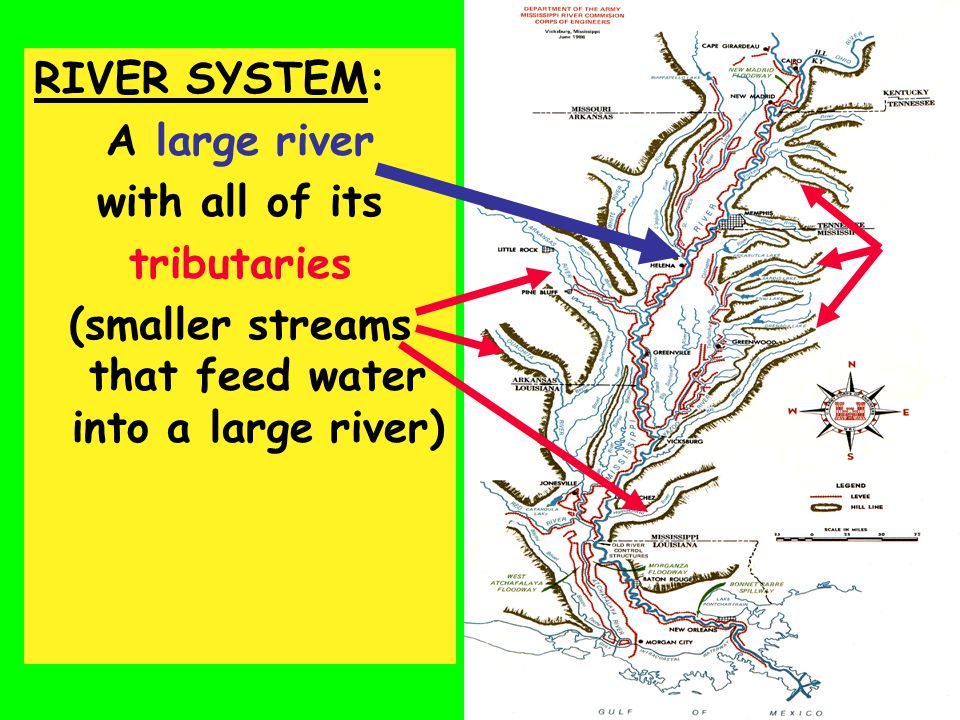 (smaller streams that feed water into a large river)