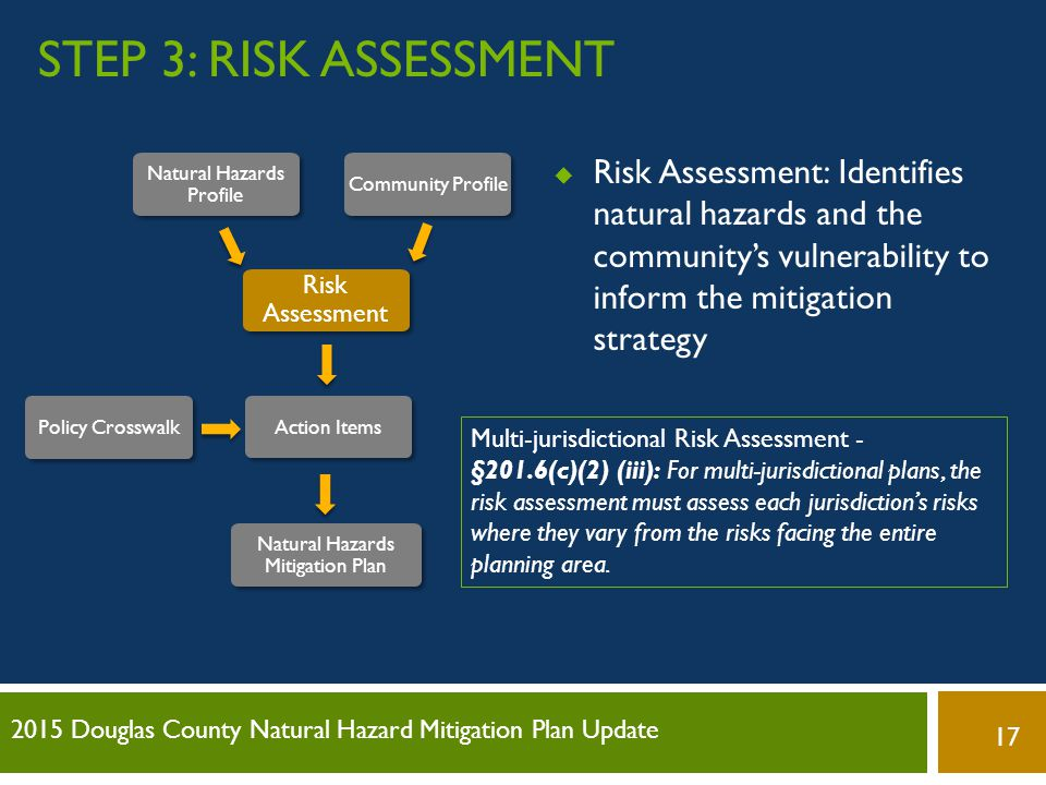 Step 3: Risk assessment Risk Assessment: Identifies natural hazards and the community's vulnerability to inform the mitigation strategy.