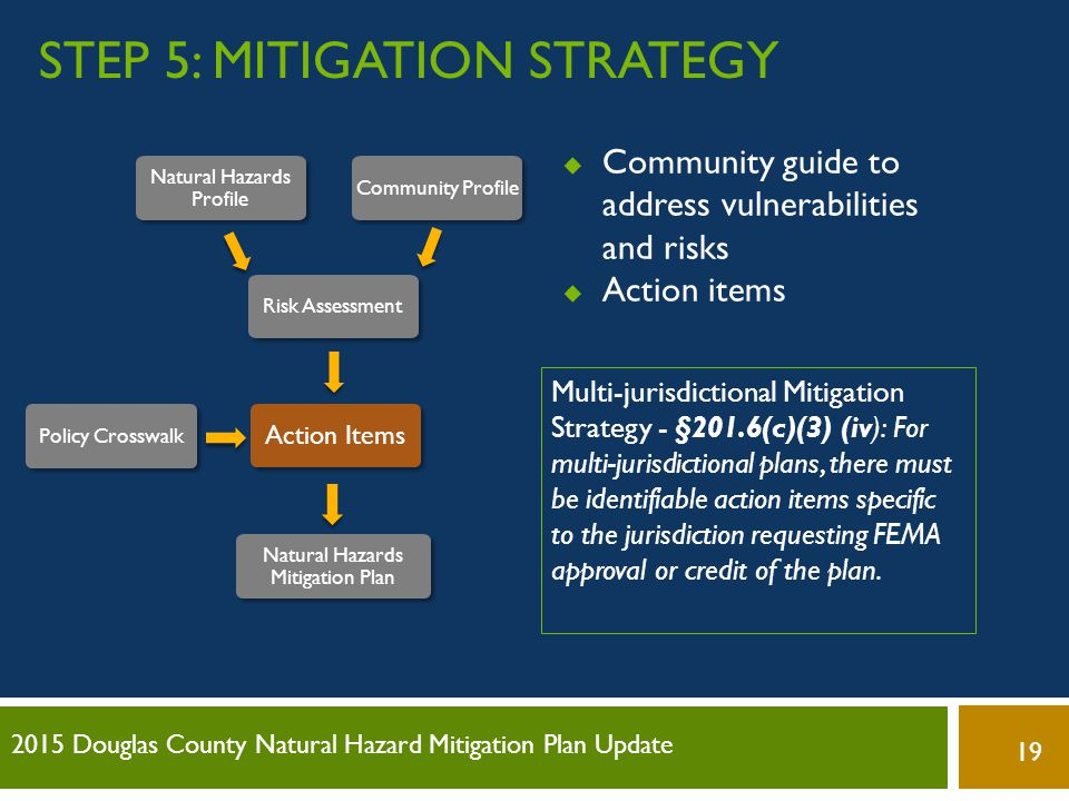 Step 5: Mitigation Strategy
