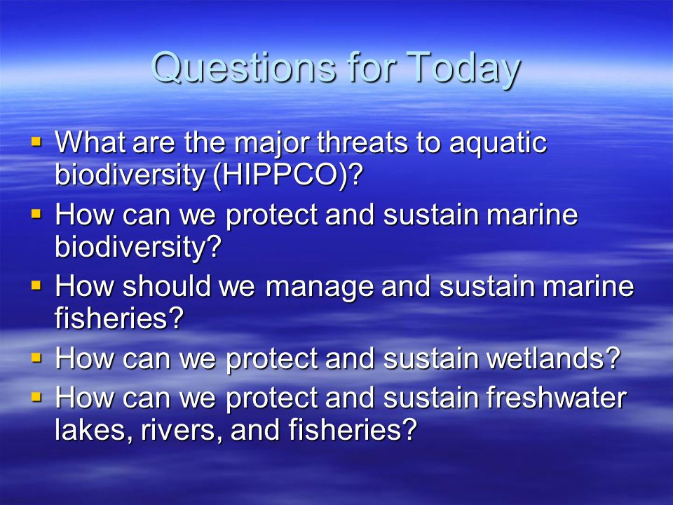 how can we protect marine life 1998 project oceanography fall series 3 year of the ocean year of the ocean organisms that are important to both humans and other marine life how do we.