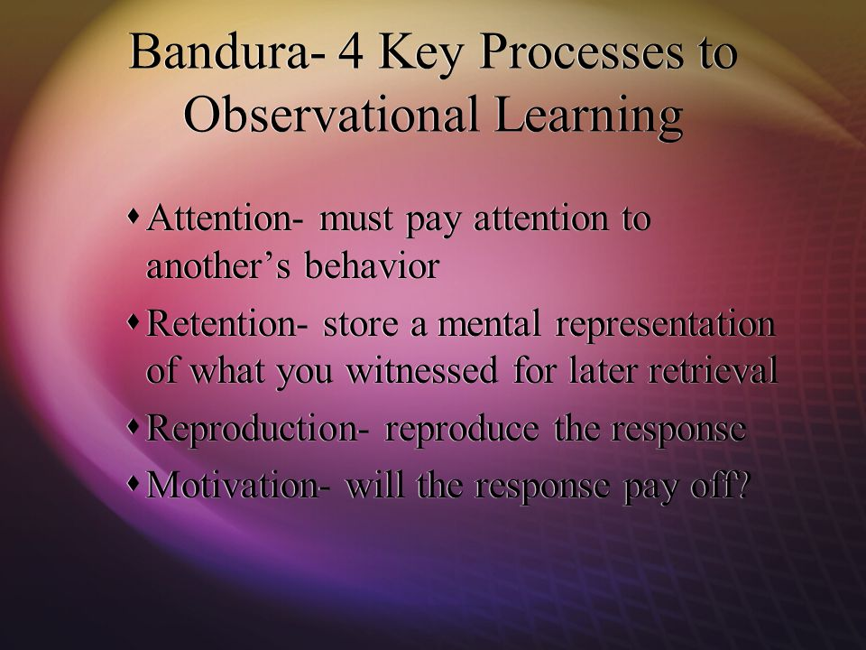 bandura observational learning Observational learning or social learning occurs when individuals  bandura's  bobo doll experiment is widely cited in social psychology as a.