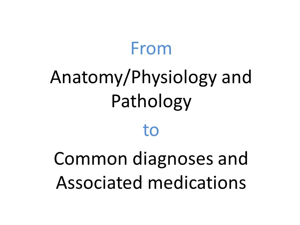 Modern What Is Anatomy Physiology And Pathology Image - Anatomy ...