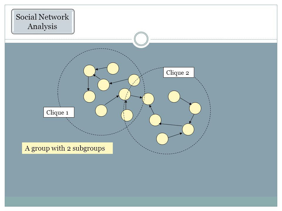What Is Social Network Theory