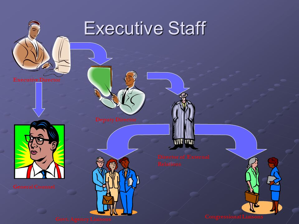 Executive Staff Executive Director Deputy Director
