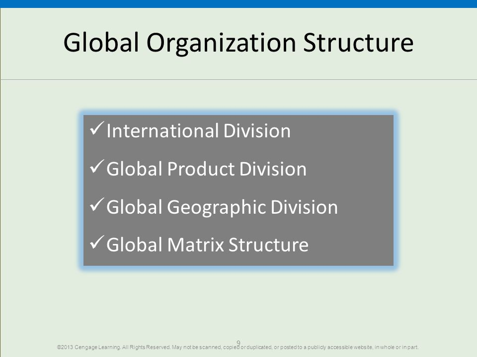 Global Organization Structure