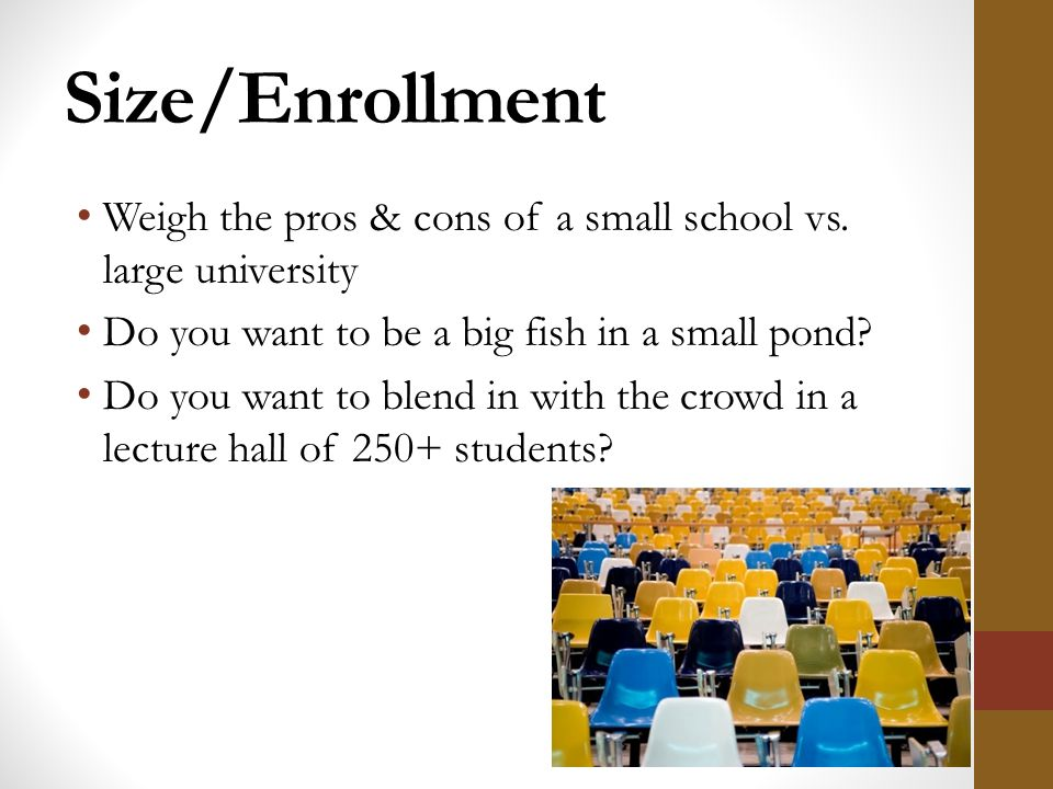 College planning overview ppt download for Be a big fish in a small pond