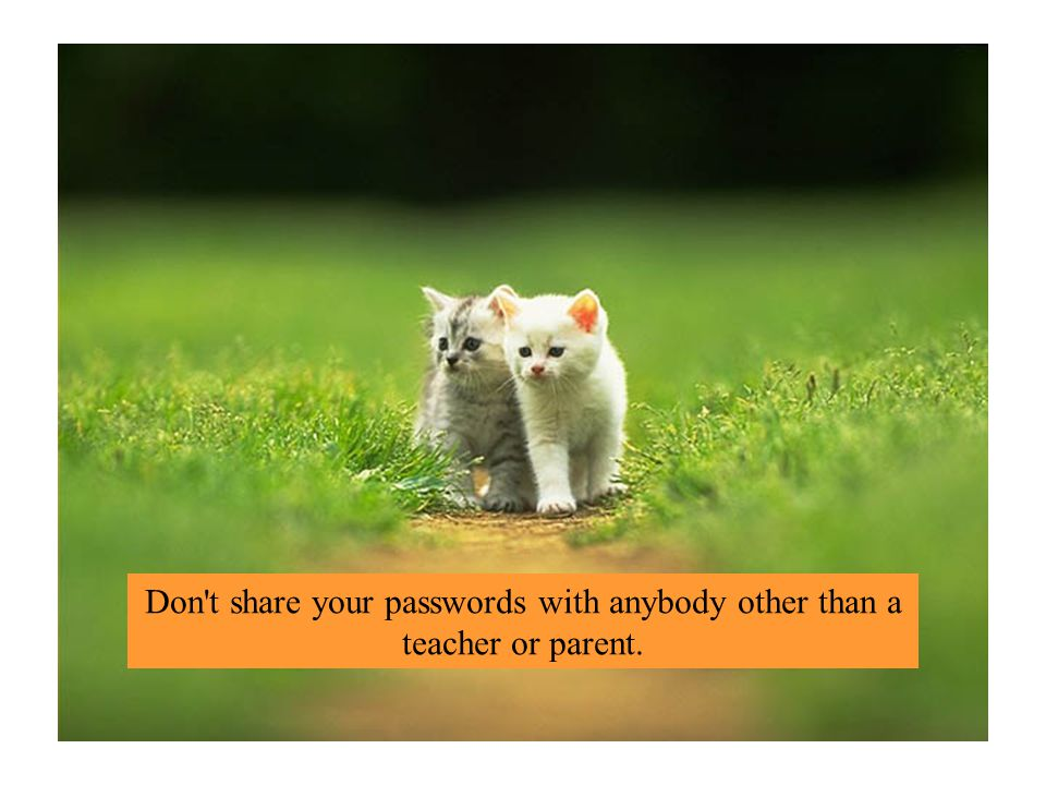 Don t share your passwords with anybody other than a teacher or parent.
