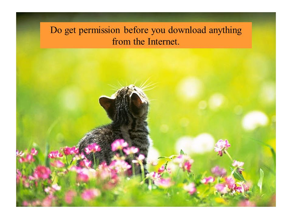 Do get permission before you download anything from the Internet.