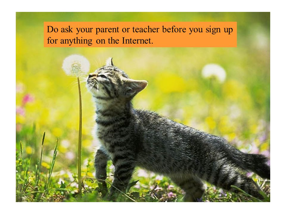 Do ask your parent or teacher before you sign up for anything on the Internet.