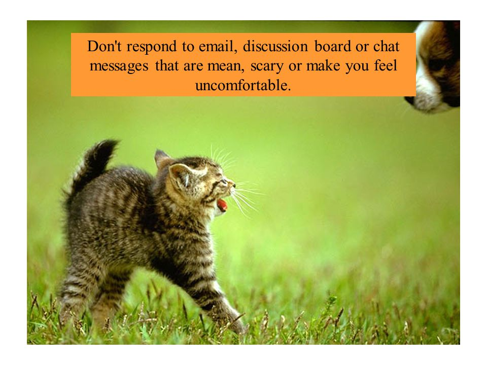 Don t respond to  , discussion board or chat messages that are mean, scary or make you feel uncomfortable.