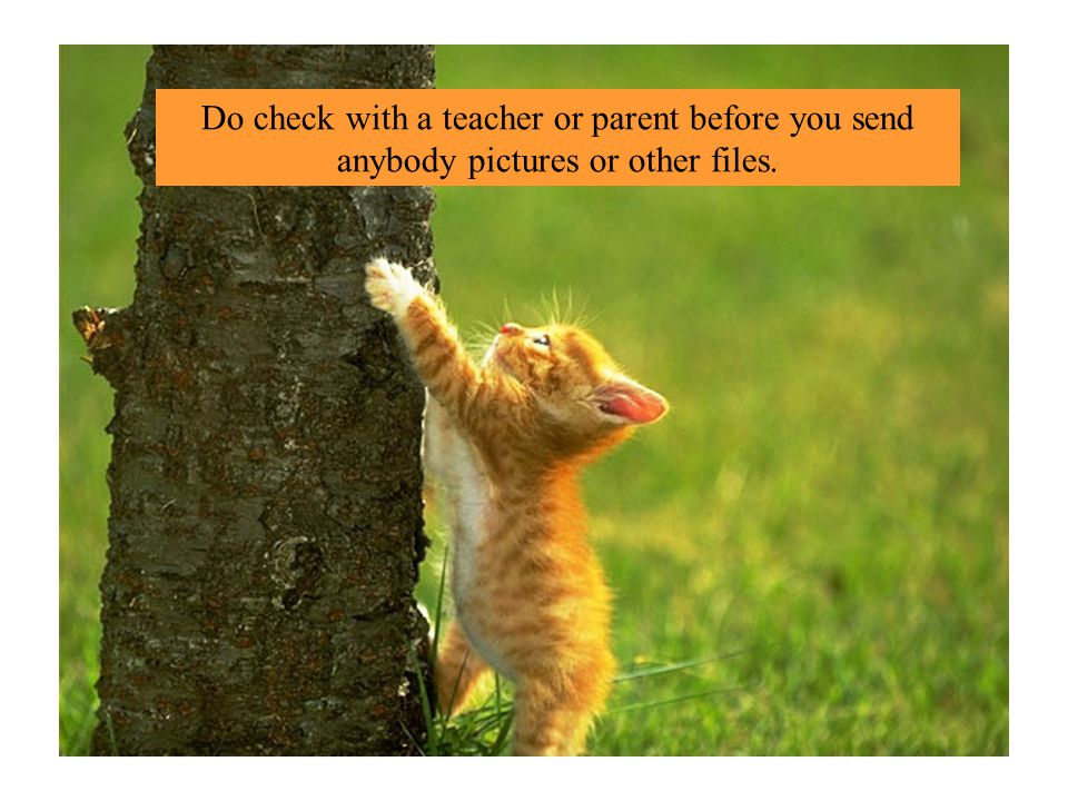 Do check with a teacher or parent before you send anybody pictures or other files.