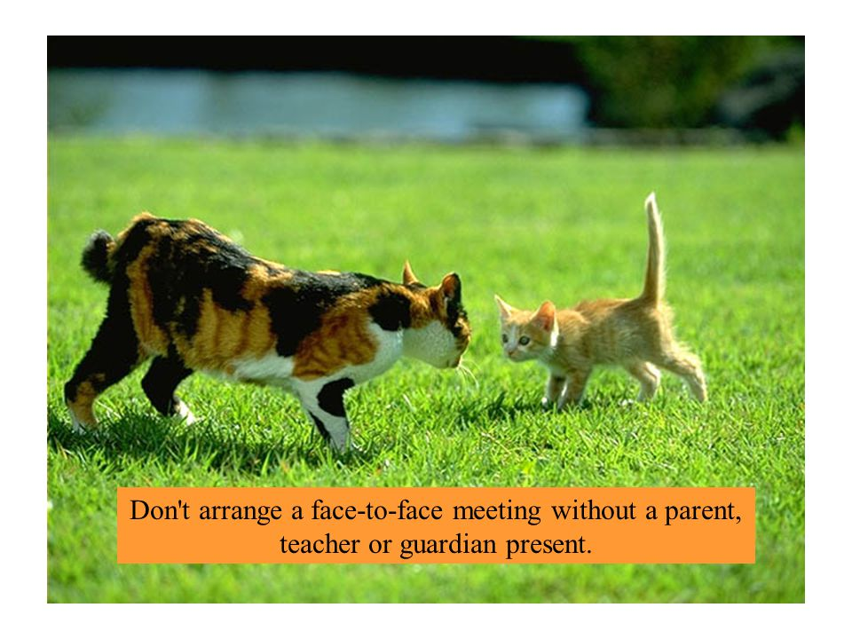 Don t arrange a face-to-face meeting without a parent, teacher or guardian present.