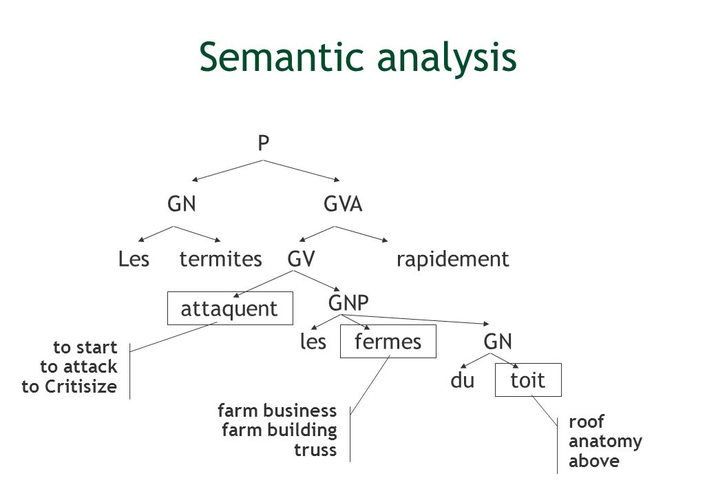 Semantic analysis P GN GVA Les termites GV rapidement GNP attaquent